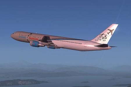 Repintando aviões pra Flight Simulator