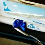 Faça sua etiqueta de bagagem customizada da KLM – bem legal!