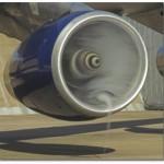 Por que não colocam uma proteção nos motores a jato pra não entrar pássaro?