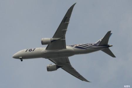 Boeing 787 apresenta problema no trem de pouso