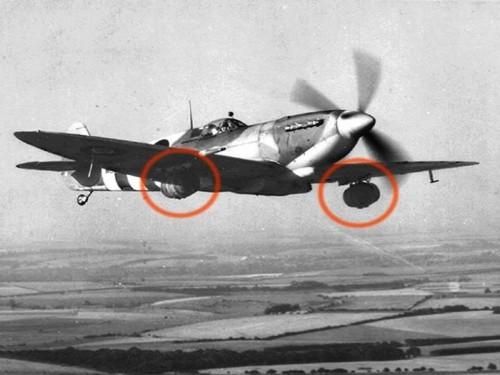 Spitfire e a cerveja
