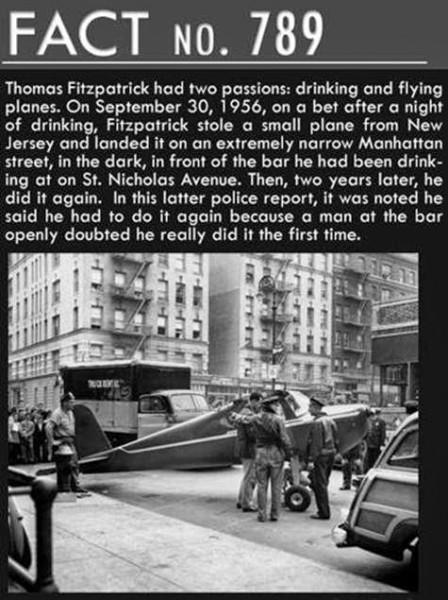 flybar2
